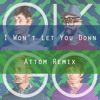 OK Go - I Won't Let You Down (Attom Remix) mp3