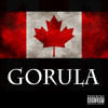 Dr. Gorula Prescribes Noise Cancelling Headphones (Dr Gorula) [Free Download]