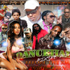 NEW Dancehall Mixtape 2014 {NOVEMBER}VYBZ KARTEL,AIDONIA,MAVADO,ALKALINE,BEENIE,KONSHENS  ShowDown