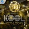 Tunecraft Kool Keys Loops // 200+ midi files & wav loops - OUT NOW !