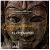 Dave Seaman - Justified Replacement Of Lulu ( Cristoph Remix ) SC EDIT