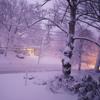 Winter Mix #3