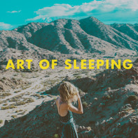 Art of Sleeping Crazy Artwork