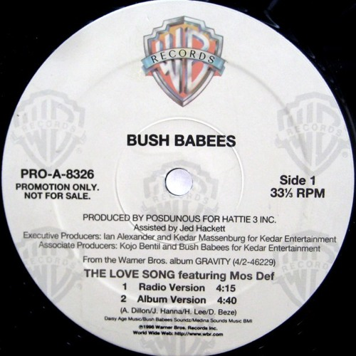 Bush Babees Feat. Mos Def / The Love Song  (Remix )