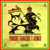 Pancho Camacho X Aswad - Shine 2015