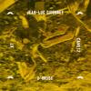 Jean-Luc Guionnet & d'incise - at Cave12 (exerpt) [insub43]