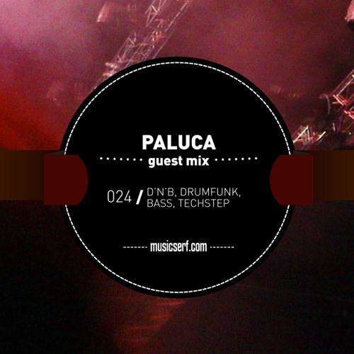 024 MUSICSERF guest mix Paluca