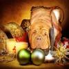 Christmas Music - Instrumental -