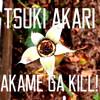 Akame ga Kill! ED 2 - Tsuki Akari