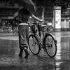 A walk in a rainy city  | fairouz