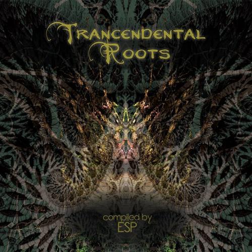 V/A Transcendental Roots - promo mix
