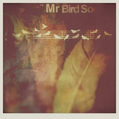 Mr Bird Remixes