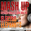 Baha Men Vs Toby Green - Who Let The Dogs Out (Electro Elephants Mash Up)