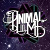 Kesha   'Die Young' Cover By The Animal In Me