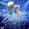 Miley Cyrus - Landslide (Bangerz Tour)