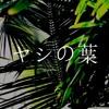 ajgor & apriljoke - palm leaves