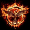 The Hanging Tree from The Hunger Games: Mockingjay (Piano and Voice cover by Dani the Girl) mp3