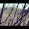Orang Ketiga (HiVi) Acoustic Guitar Cover