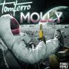 Tom Ferro- Molly (Original Mix) [FREE] ***OUT NOW***.mp3