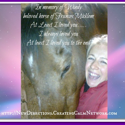 In Memory of Windy - The beloved horse of Frances Micklem