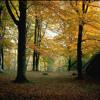 The Autumn Leaves - Eva Cassidy COVER [www.videograbber.net]