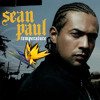 Temperature - Sean Paul (THREES Remix)