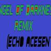 Angel Of Darkness Remix (Echo's)