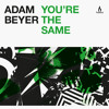 Adam Beyer - You're The Same - Truesoul - TRUE1253