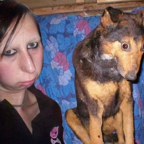 KutyasetaltatokBalladaja