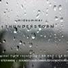 Midsummer Thunderstorm [Audiophile Field Recording 96 kHz 24 Bit WAV]