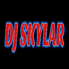 Mega Dance Party 2014 Mixed By Dj SkyLar
