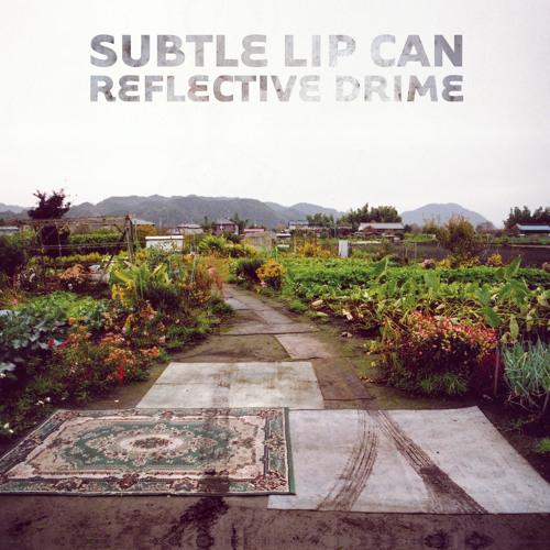 Subtle Lip Can - Fliver Shame