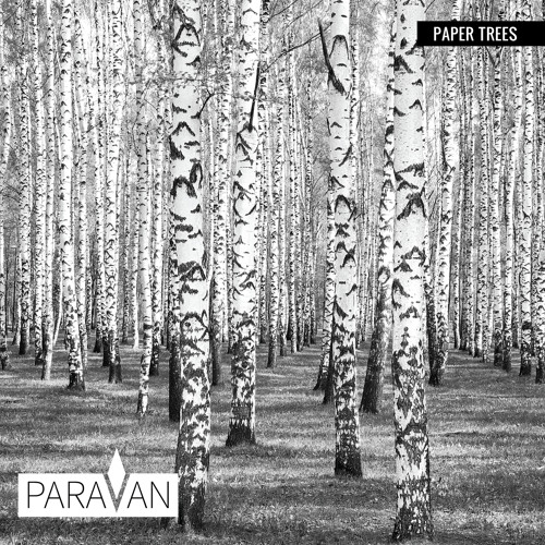 ParaVan - Paper Trees EP