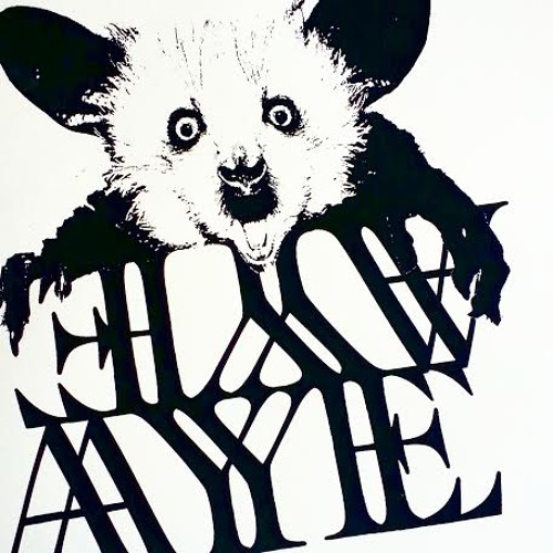 AYE AYE -- Remains