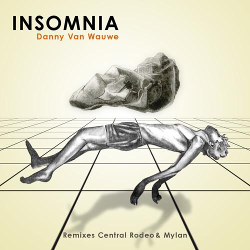 Danny Van Wauwe - Insomnia - Ayeko Records