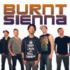 Blur Mix - Song 2/Baby Got Back(Burnt Sienna Mash-Up)