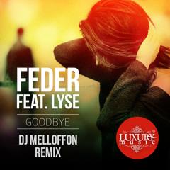 Feder feat. Lyse - Goodbye (MLFN Remix)