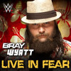 2014  WWE Bray Wyatt Theme Song - Live In Fear w New Intro