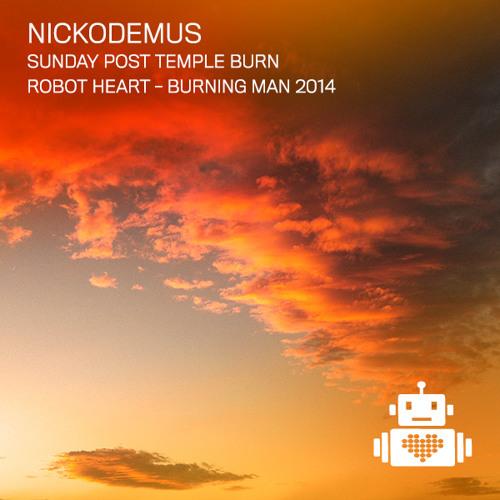 Nickodemus - Robot Heart - Burning Man 2014