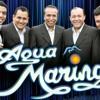 Canto Herido - Agua Marina -DJ Fichito 2012