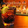 Lounge Beats 14 By Paulo Arruda