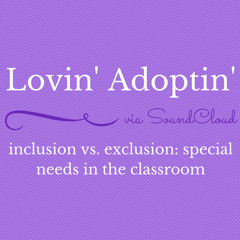 Inclusion Vs Exclusion  Special Needs In The Classroom