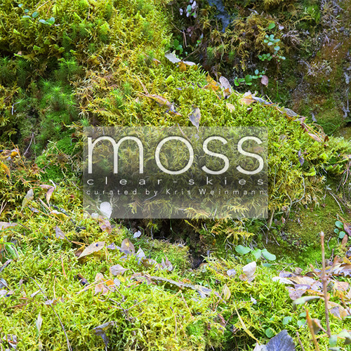 moss: clear-skies