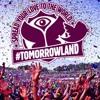 ID - ID Vs. Sander Van Doorn, Martin Garrix, DVBBS Gold Skies (feat Aleesia) (Tomorrowland Edit)