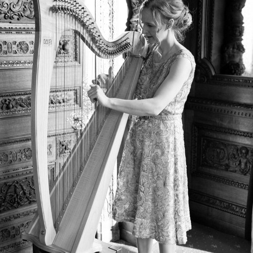 Bach - Arioso (on harp)