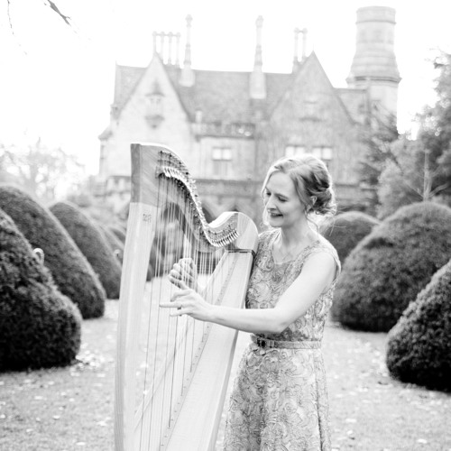 Debussy - Clare de Lune (on Harp extract)