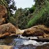 Mae Sa Waterfall near Chiang Mai, Thailand 1