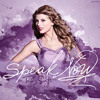 Taylor Swift Cover - Speak Now