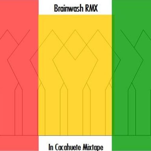 BrainWash (GayaStank Remix)