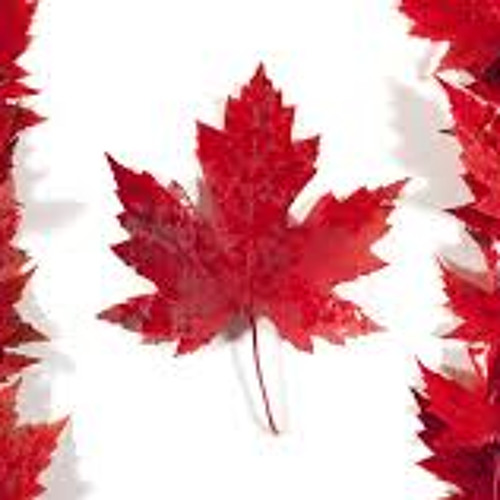 The best Canada has to offer
